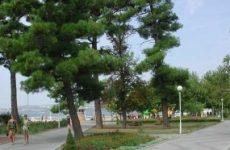 г. Геленджик, гостевой дом на Первомайской, 35 А и Кирова, 38